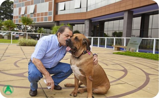 Hospitais permitem que cães visitem donos internados