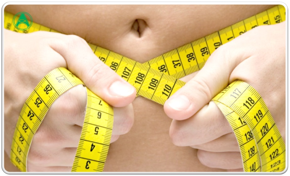 Dieta americana para perder peso