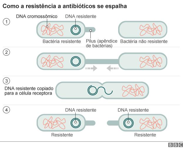 antibiotic_resistance
