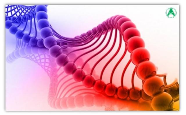 hereditariedade-gene