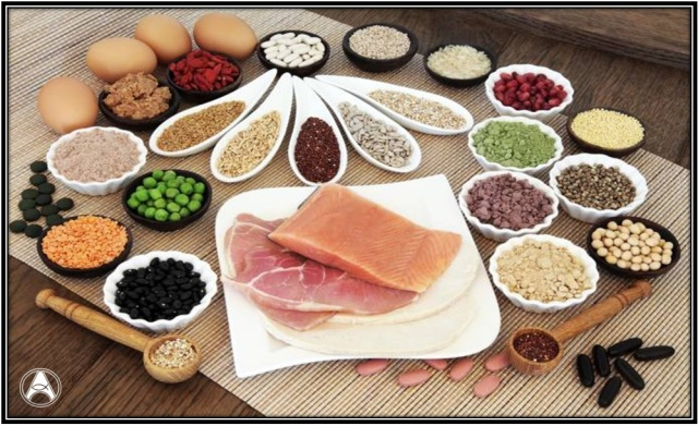 proteina-alimentacao