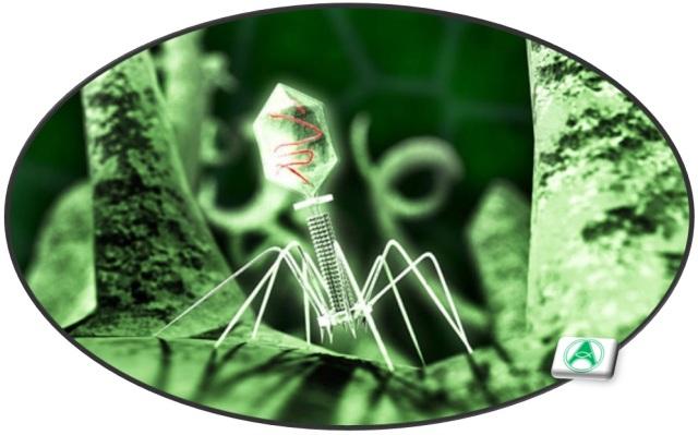 virus-ilustrativo