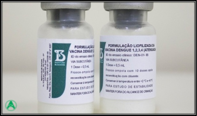 vacina dengue