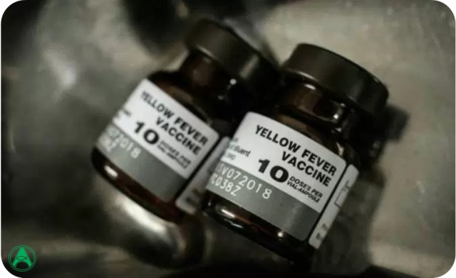 vacina famarela