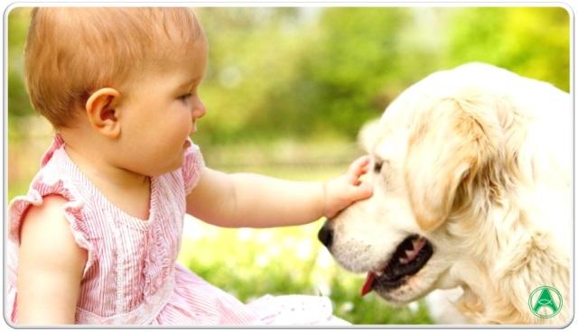 criança cachorro saúde