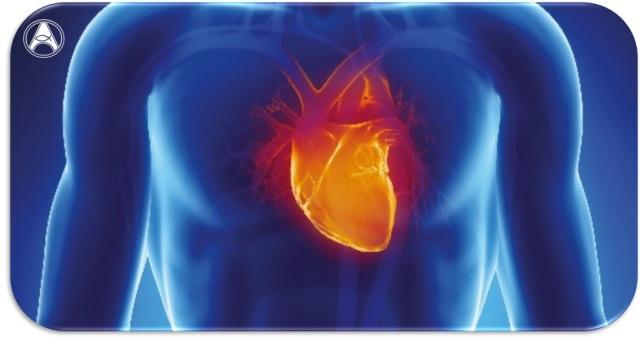 marcio coração