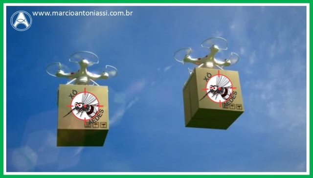 aedes drone