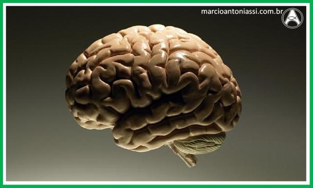 Alzheimer cérebro